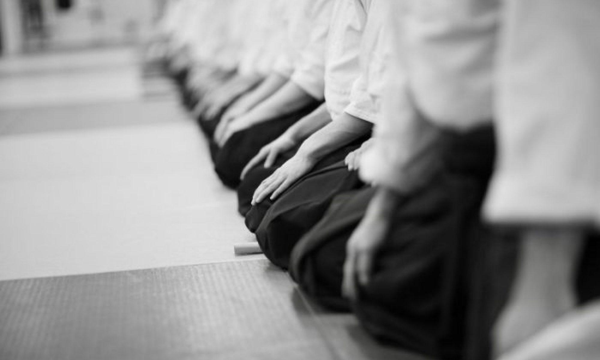 Aïkido Club Tournefeuille